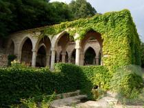 Bałczyk i ogród botaniczny